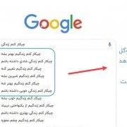 google bert؛ الگوریتم برت چیست؟ الگوریتم برت BERT گوگل چیست؟