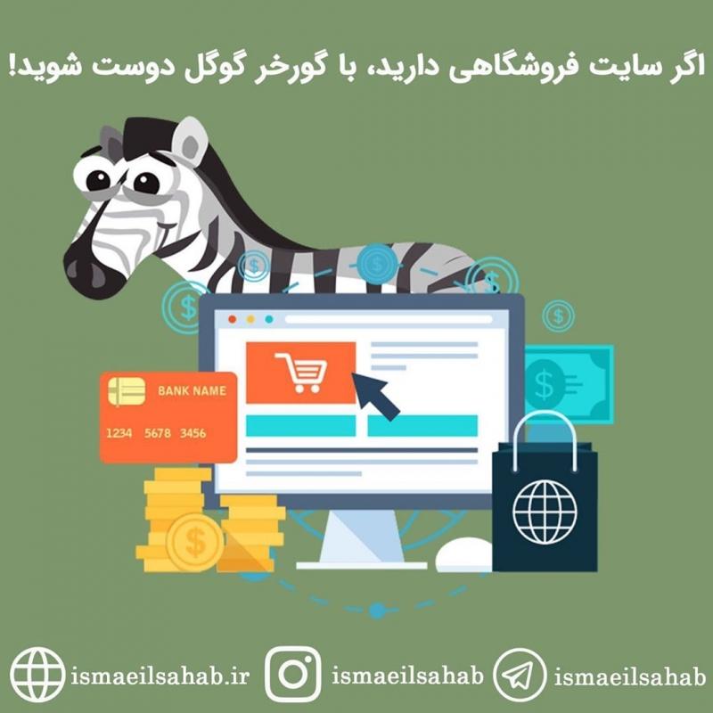 مهم ترین فاکتورهای الگوریتم گورخر گوگل (Google Zebra)